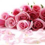 恋愛運とお花の関係。花風水を試してみた!