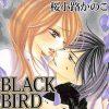 漫画『BLACK BIRD』最後まで素敵に思えた作品 ※ネタバレ含む
